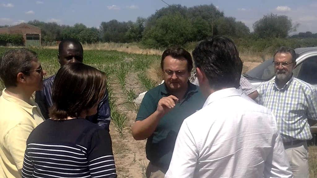 Visit to a Corn Farm