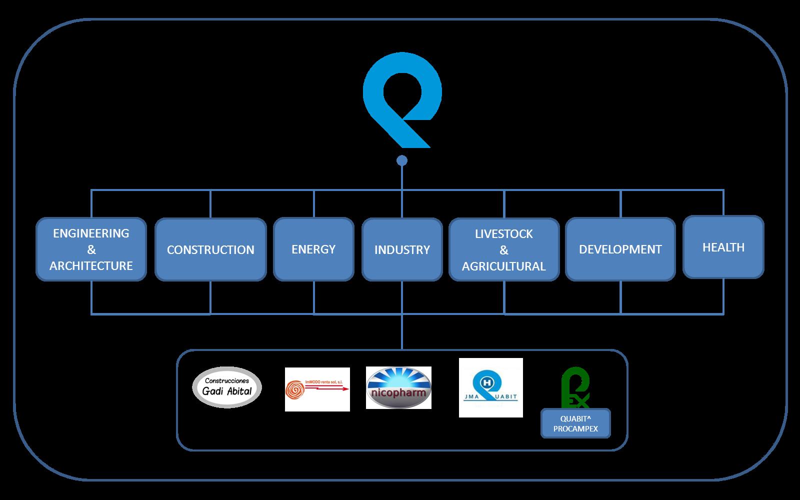 Organizational chart of the Company